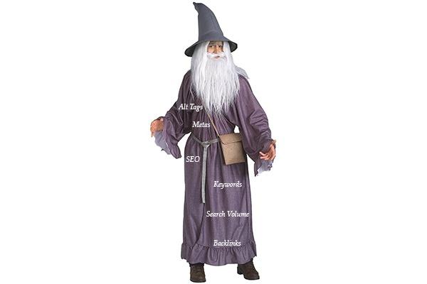 SEO Wizard Halloween Costume